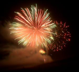 Hoover vet gives advice on medications for calming dogs during fireworks