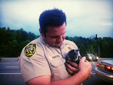 Jefferson County Deputy rescues furry stowaway while changing tire