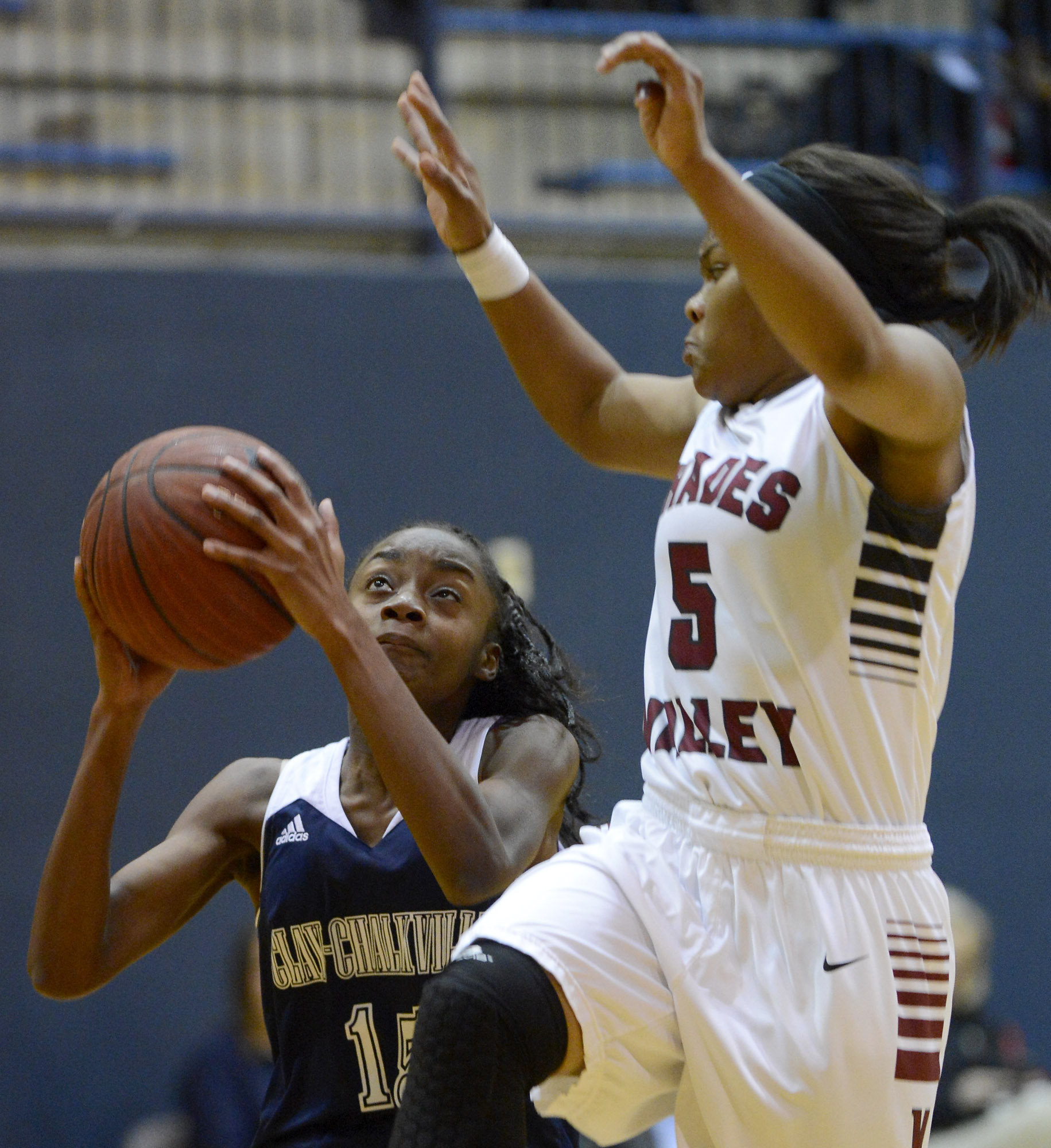 Clay-Chalkville graduate signs on to be Lady Tiger