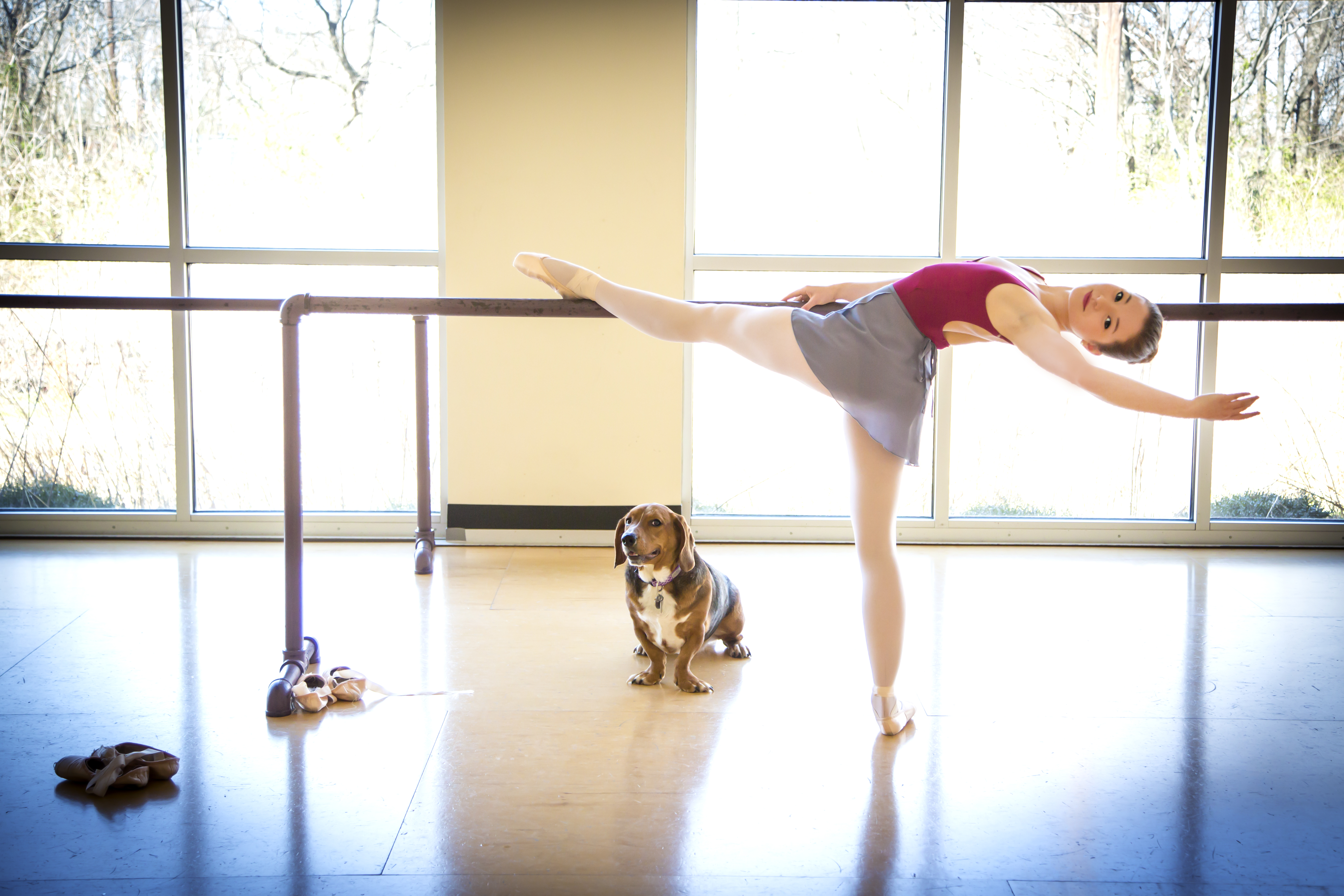 Trussville photographer releases book combining rescue dogs, ballet