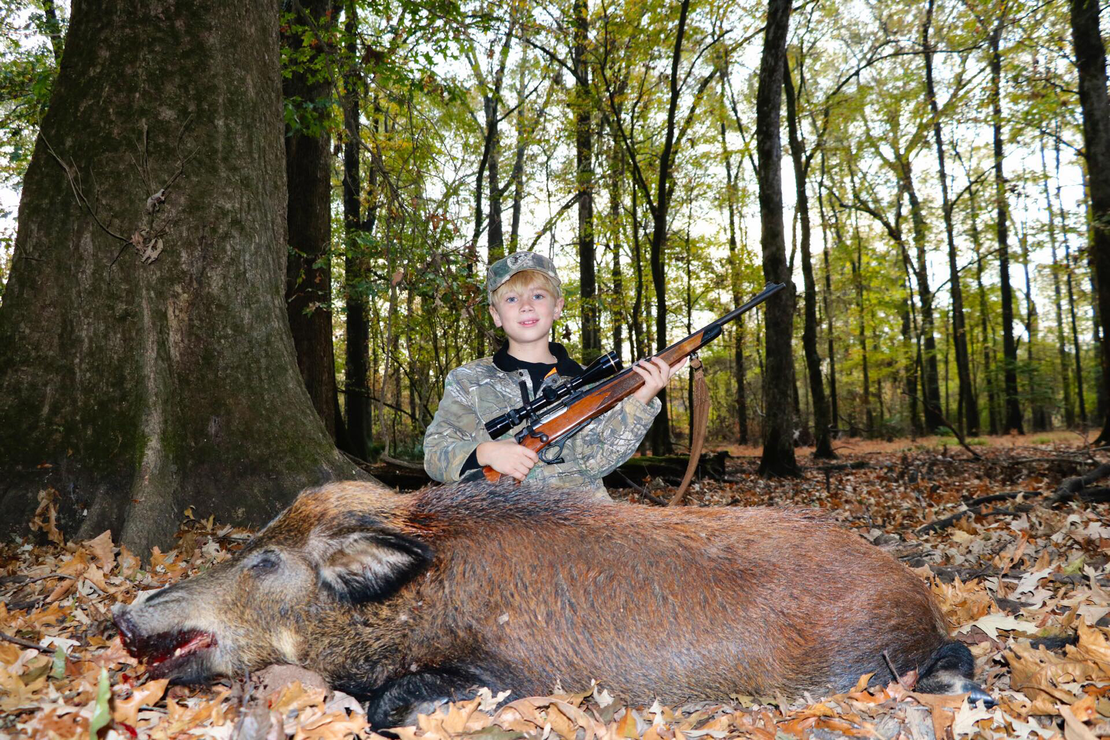 Feral hog population reaches all 67 Alabama counties