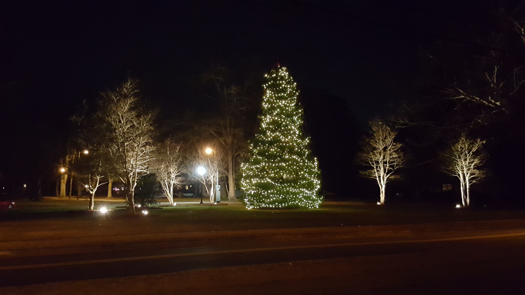 Did you miss Trussville's tree lighting? Check it out here