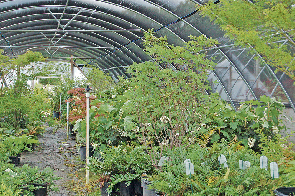Experience is key for Keith Landscaping Co. & Nursery