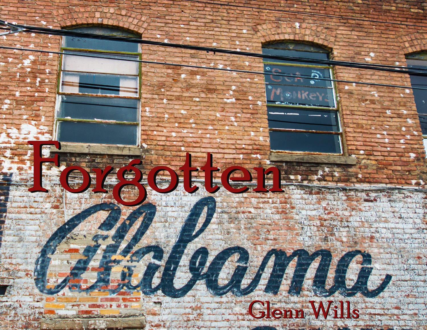 Glenn Wills coming to Pinson Public Library to share Alabama's forgotten history