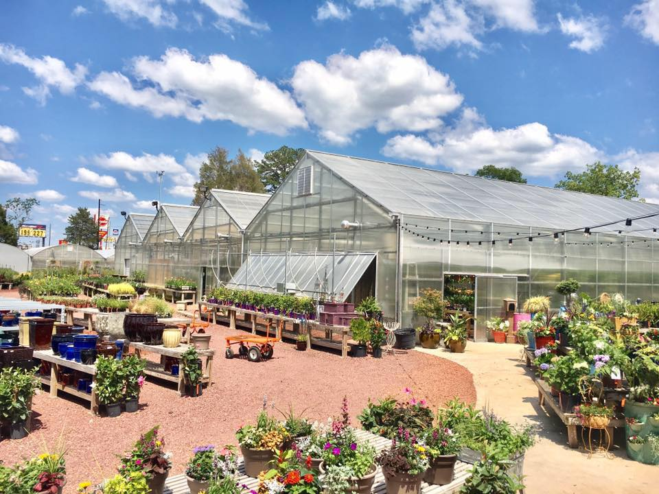 Warren Family Garden Center And Nursery