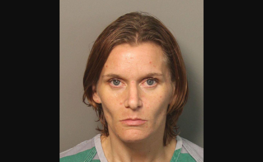 Trussville woman makes first court appearance in dog's hot car death