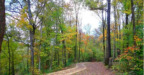 Trail and riverbank cleanup this Saturday in Trussville