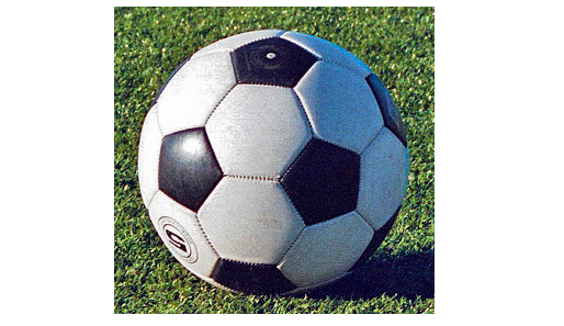 Pinson, Clay, Springville advance in soccer playoffs