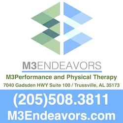 M3 Endeavors