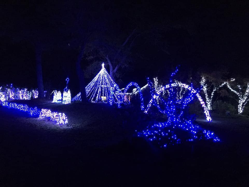 Bama Lights in Pinson bringing Christmas spirit with 287,000 lights