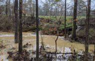 More drenching rains take aim at flood-ravaged South