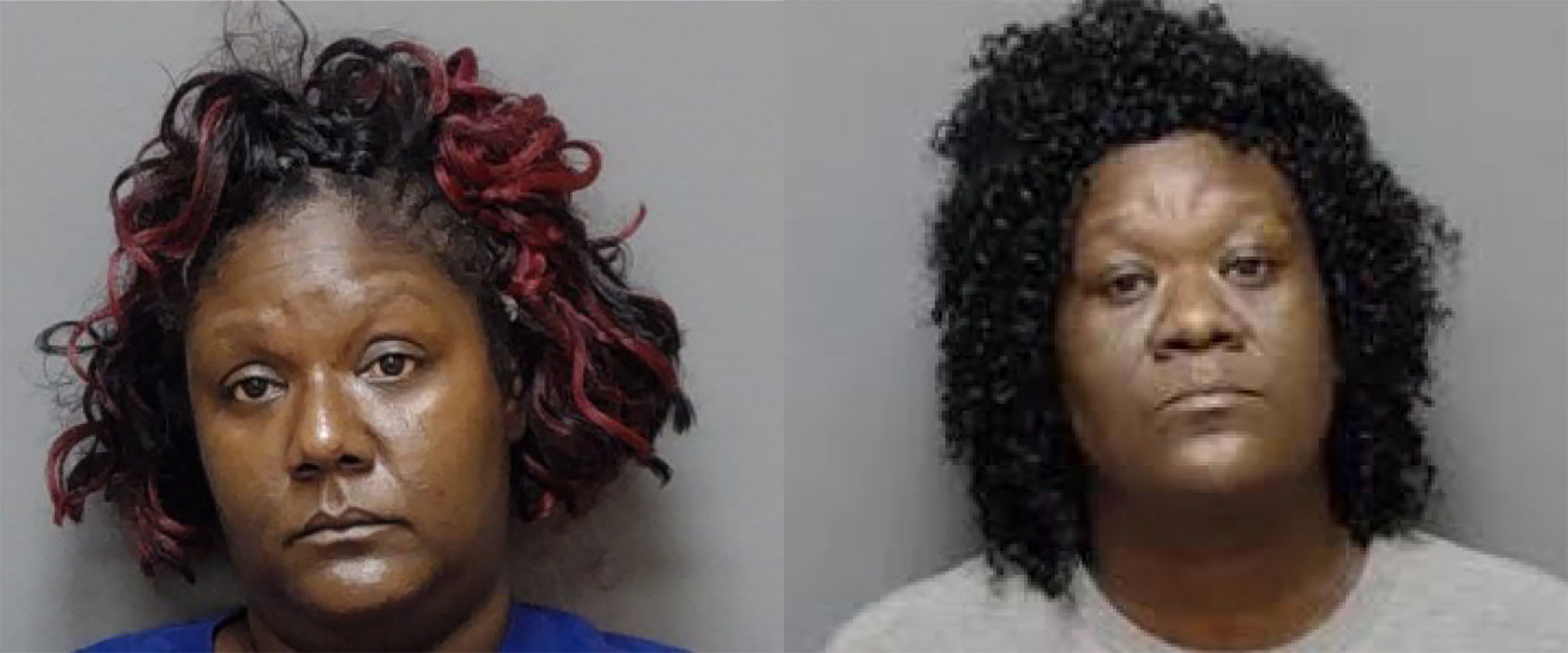 Women charged with removing ill mother from ambulance