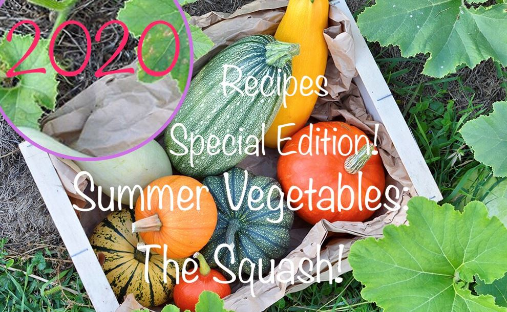 Summer Vegetables: Squash Recipes