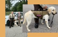 St. Clair County welcomes new K9 to 'sniff out crime'