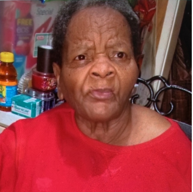 Search continues for Birmingham woman missing since June