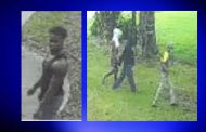 Pinson-area home burglarized; surveillance images released
