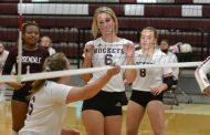 PHOTOS: Postseason volleyball action begins