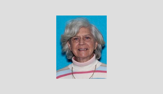Missing person alert issued for 85-year-old woman