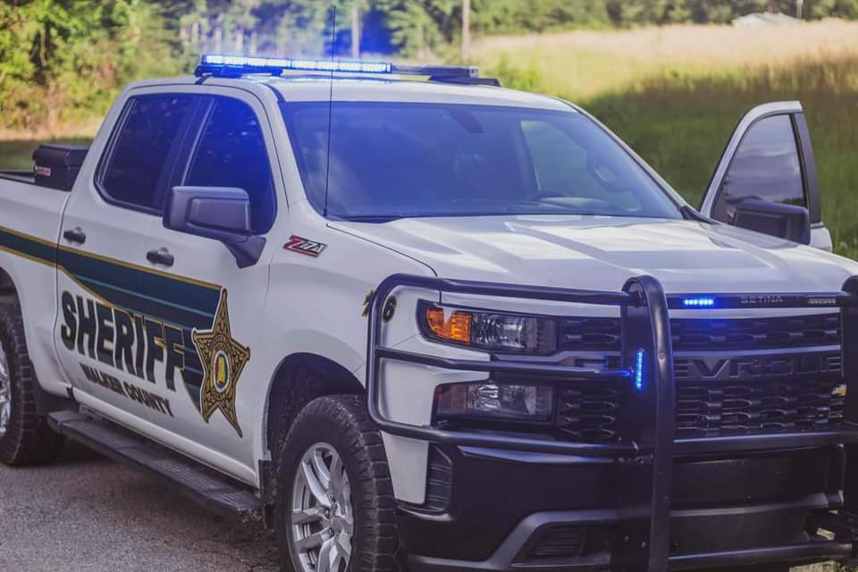 Woman killed by pack of dogs in Walker County