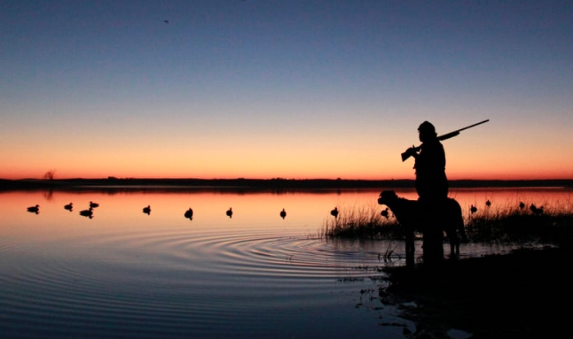 Special waterfowl hunting days announced for youth, veterans, active military personnel