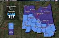 Freeze Warning issued for our area overnight