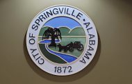 Springville Council continues budget talks, hears from residents about downtown lights