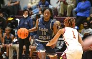 GIRLS HOOPS: Clay-Chalkville handles Pinson in area play