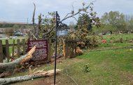 Trussville businesses cleaning up after storm damage along Gadsden Highway