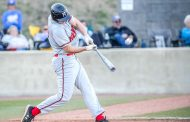 Hewitt-Trussville, Moody, Leeds players named to ASWA All-State Baseball Team