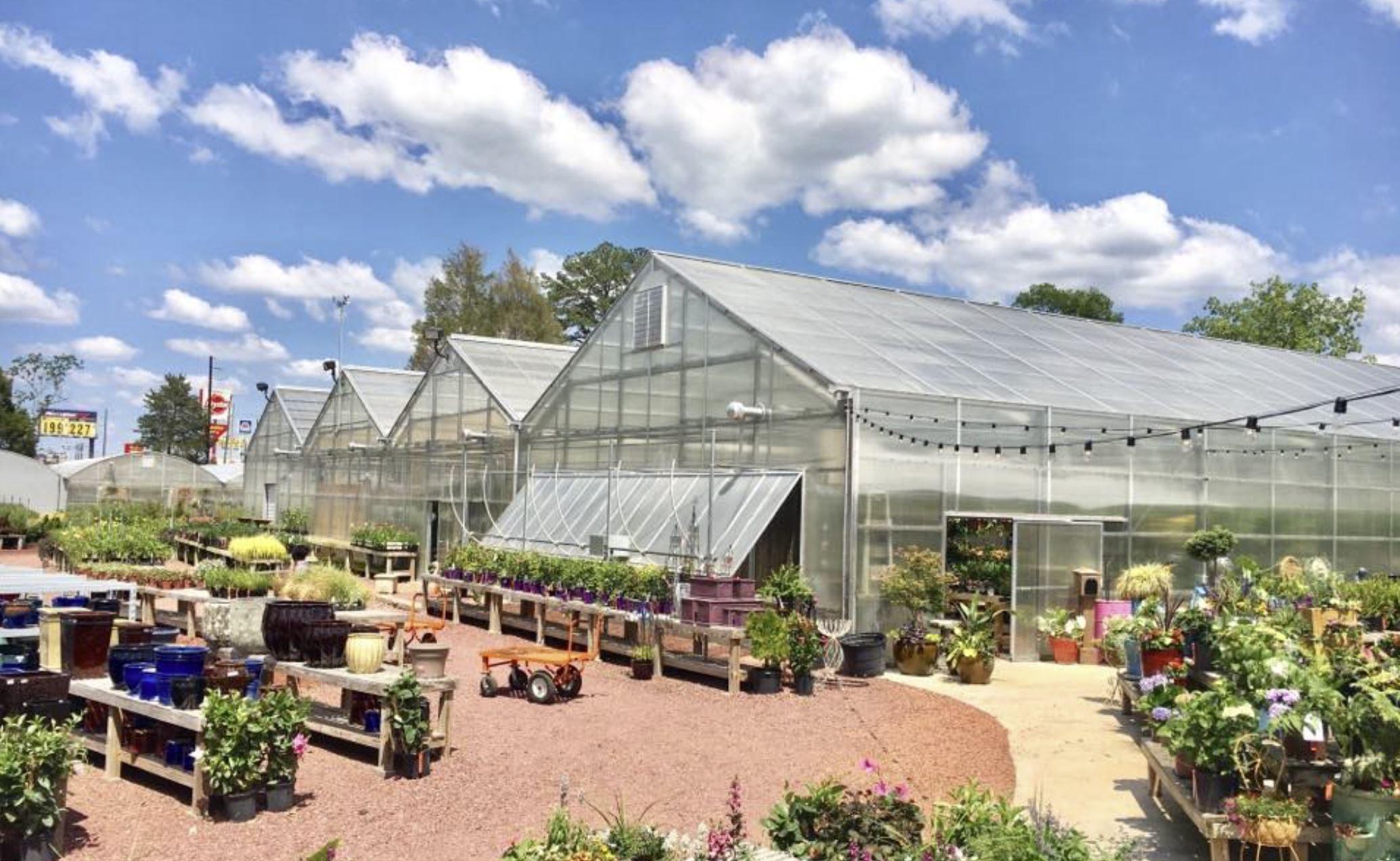 Warren Family Garden Center: Blooming Spring Projects