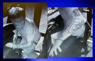 Crime Stoppers: Pinson Valley High School bus stolen